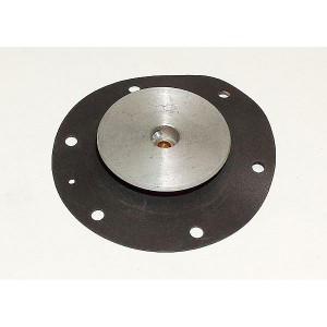 Diaphragm Assembly 18A2451X012